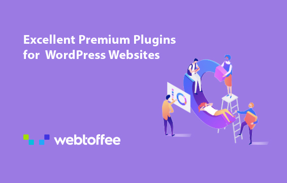 webtoffee plugin picture
